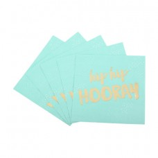 Hens Party Luncheon Size Napkins - Hip Hip Hooray Mint