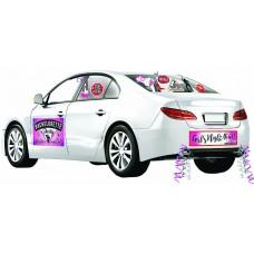 Car Decoration Kit