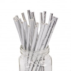 Paper Straws 10Pack - Metallic Silver