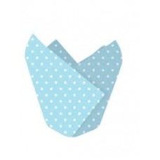 Light Blue and White Baking Cups CLEARANCE LAST ONE