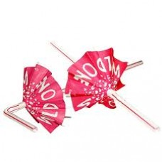 Hens Party Straws 5Pack - Wild One